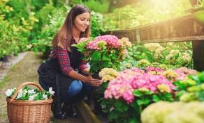 $40 Worth of Garden & Landscape Supplies